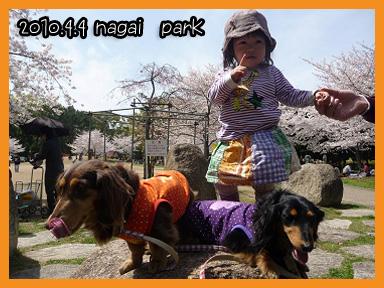 2010 04 04 お花見とオフ会 blog04のコピー