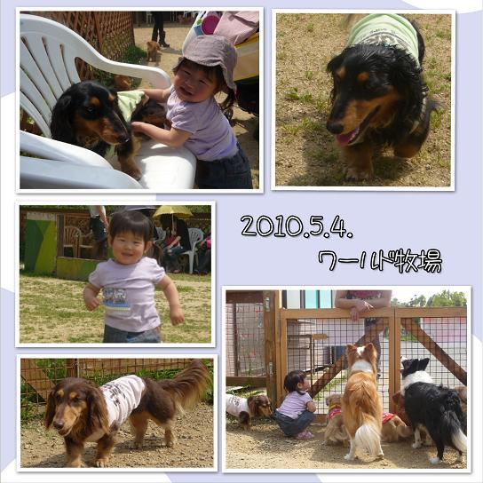 ワールド牧場2 blog002