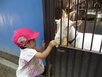 2010 06 30 長池幼稚園 wan02