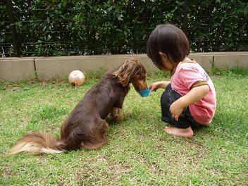 2010 06 21 モモの日常 wan01