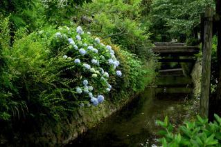 110618tetsugaku057.jpg