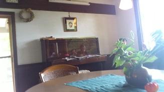金山カフェ (9)