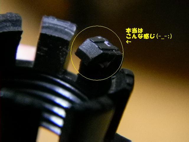 DSCN2306.jpg