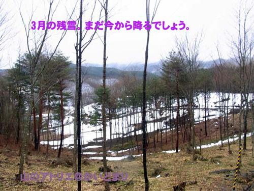 3月の残雪