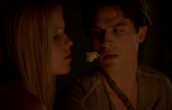 tvd3x06dr.png