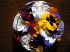 花の生け方