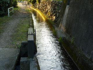 行く川の流れは