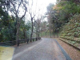 永源山の隠れ道