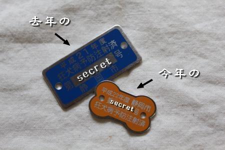 IMG_5169_convert_20100423152307-1.jpg