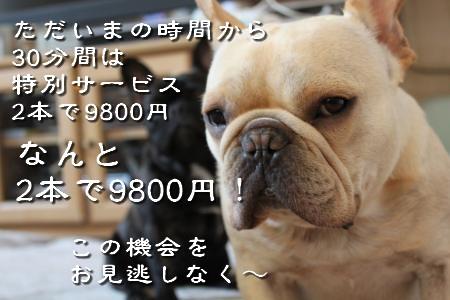 IMG_6407_convert_20100726214746-1.jpg