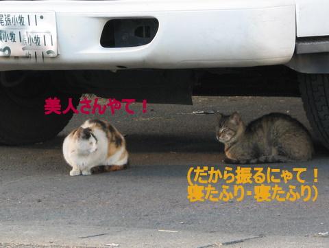 IMG_4077.jpg