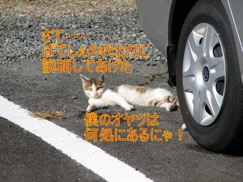 IMG_5224-1.jpg