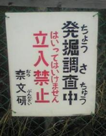 20110b__20113.jpg