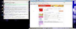 Ubuntsu_dual_window2.jpg