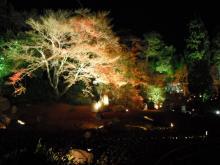 arashiyama10_hougon2.jpg