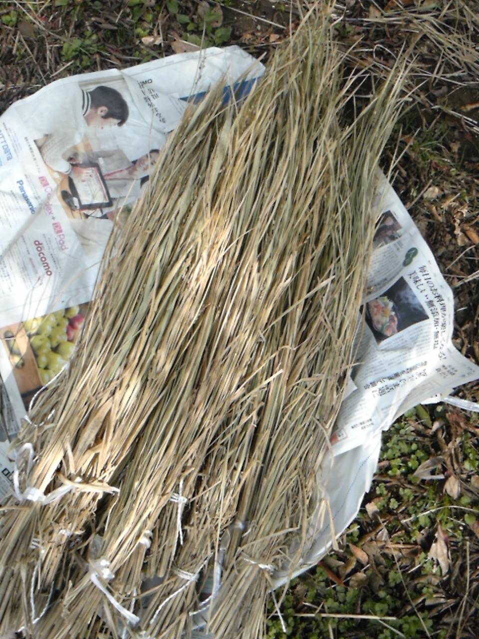 脱穀した後の藁