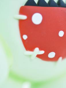 beaby-akibamaico-imagecolor-19.jpg