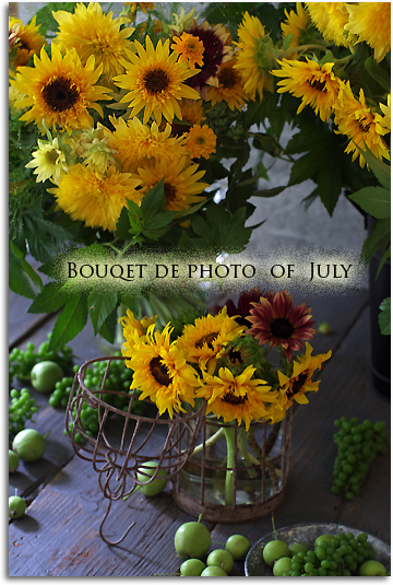 7月のBouqet de photo