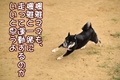 一緒に走ろ~