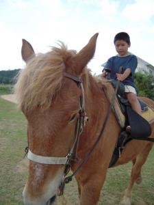 上原幼稚園引き馬0329 006