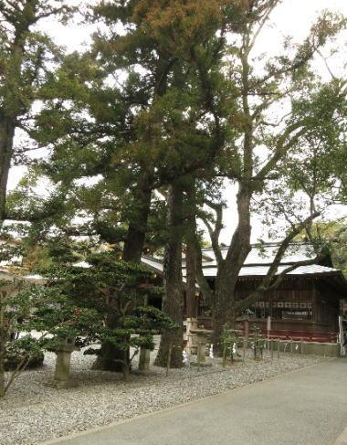 1302sarudahiko-1.jpg