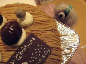ケーキ かのん