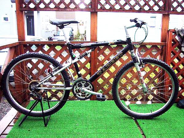 ... 子供の自転車を買う時、ついで