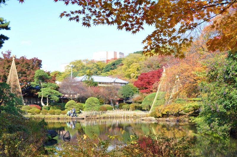 10.11.27新江戸川公園_258_1280_800