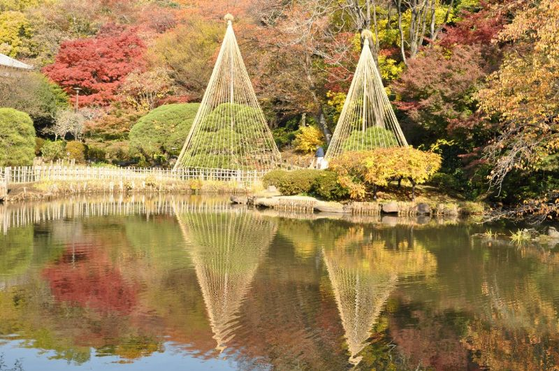 10.11.27新江戸川公園_245_1280_800