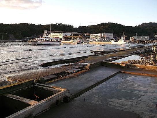 shinnsai2011120405no62