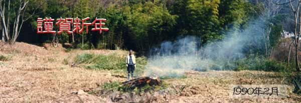 謹賀新年・竹薮伐採