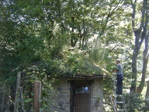 小屋屋根2