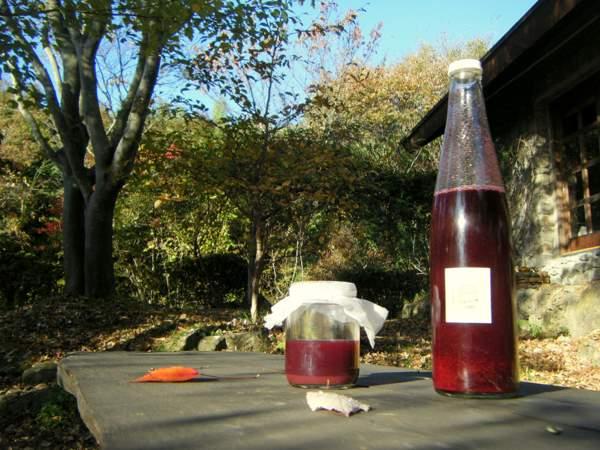 ブルーベリーとヤマブドウジュース