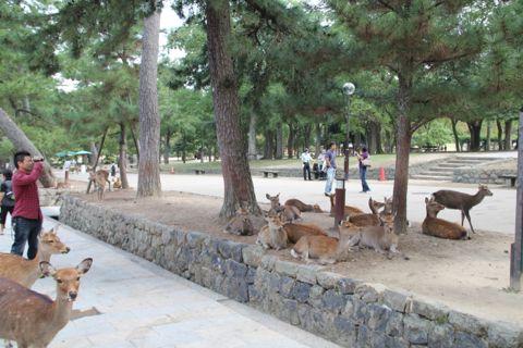 20111010_01.jpg