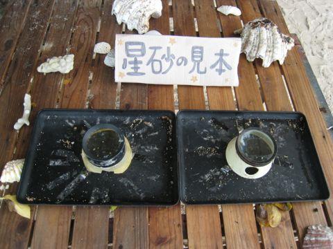 20111027_2_1.jpg