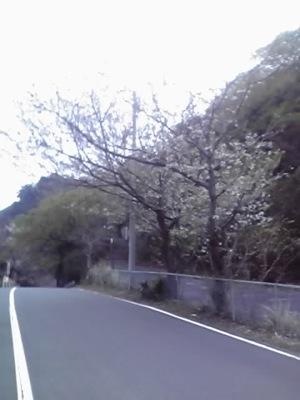 11-04-02_011.jpg