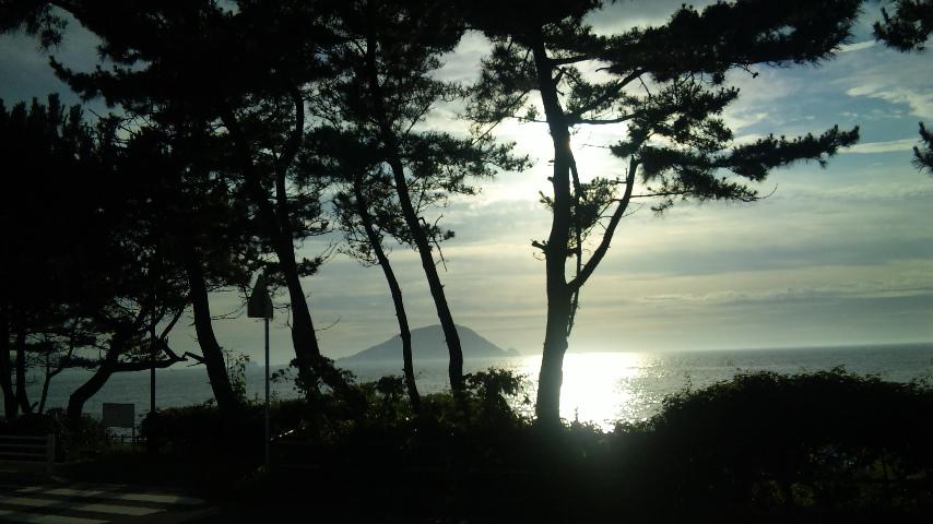 志賀島の夏