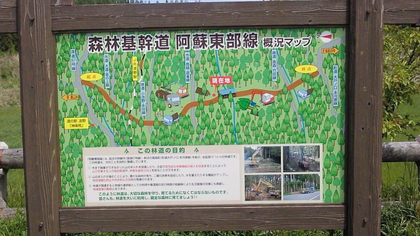 立派な林道