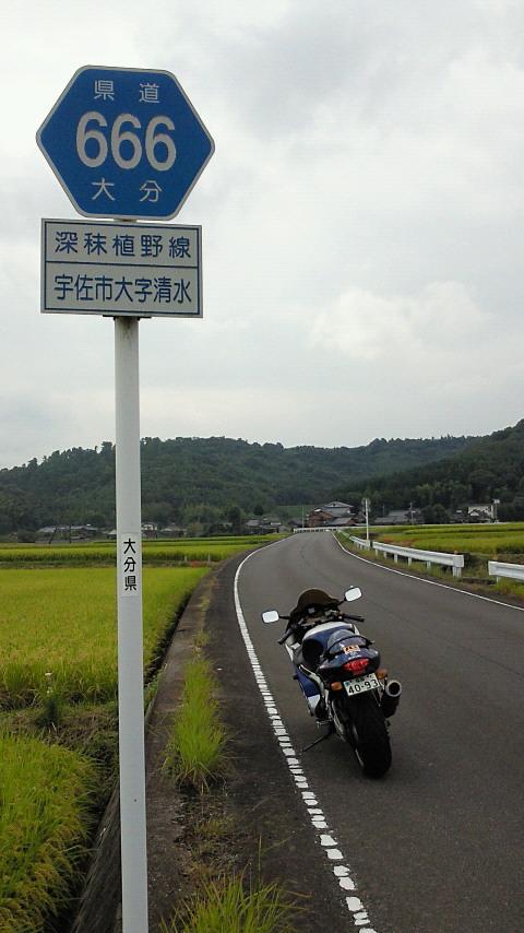 県道666
