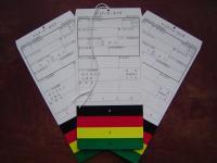 Triage_tags_(Tokyo_Fire_Department)_convert_20110520174344.jpg