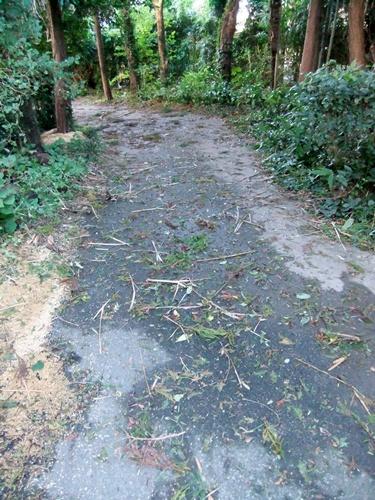 2011.9.22 台風15号通過 021 (4)