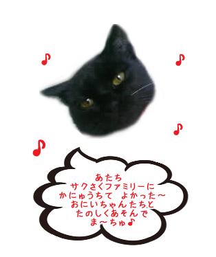 フウカちゃん ♪