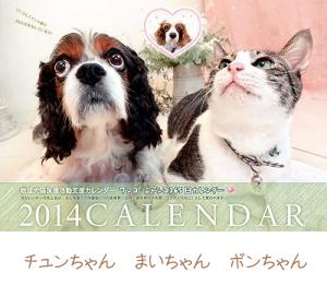 ワンコ ニャンコ365日カレンダー