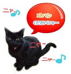 フウカちゃん③