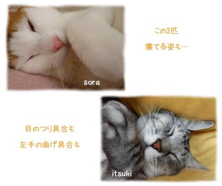 sora & itsuki