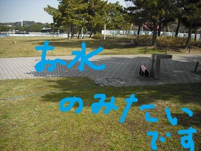 CIMG2069.jpg