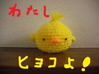 CIMG2089.jpg