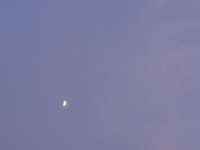 DSC05428s-640月と巻層雲と巻雲