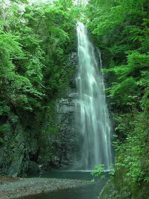 川乗岳、百尋の滝、木、林道工事0019.01s-640
