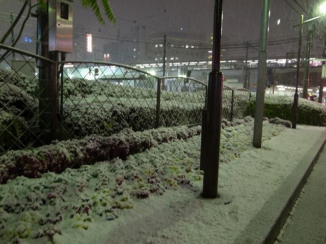 RIMG2465(大塚駅のすぐそば)s-640 20110214
